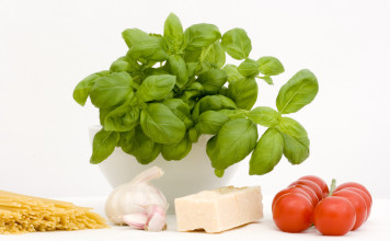 Italian ingredients – parmesan, tomato, garlic, basil, pasta