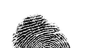finger print on white background, good detail