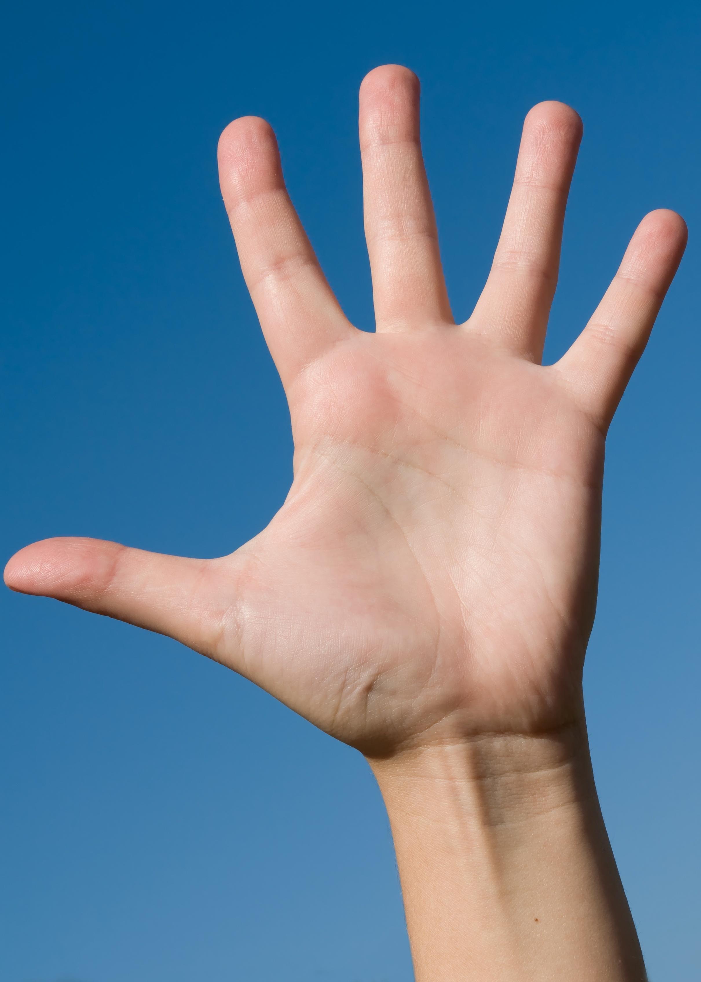 Hand-Feedback