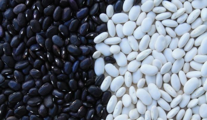 beans-799943_1280