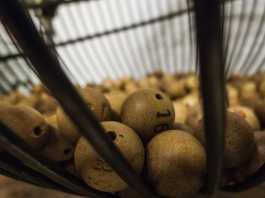 lottery-174132_1280-265x198 Spiele für die Jugendarbeit
