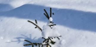 snow-1027807_1280