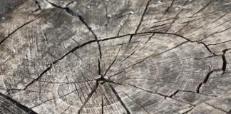 wood-366735_1280