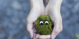 hands-creative-grass-moss