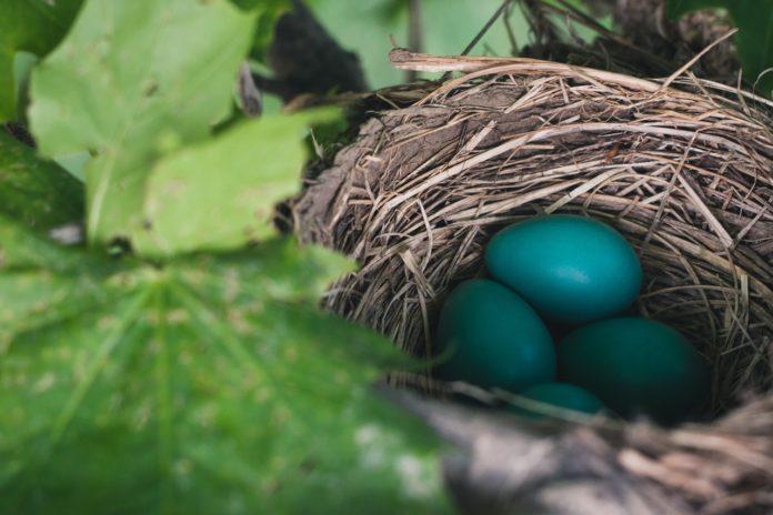 Gruppenstunden-Idee April: Ostern ist da!