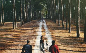 230-Trekking-Kopie-356x220 Downloads für die Jugendarbeit
