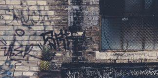pexels-photo-137077