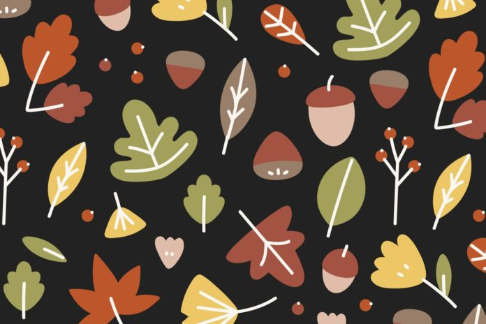 Fantasiereise für Kinder: Herbst