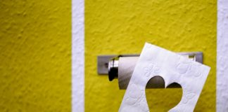 toilet-paper-3675180_1280