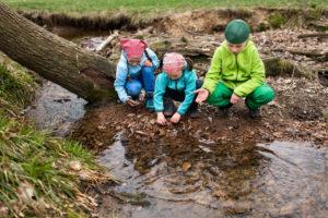 Biodiversität als Thema in Gruppenstunden und Ferienlager