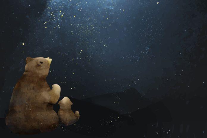 Mitmach-Geschichten für Kinder: Der dicke Bär und seine Freunde