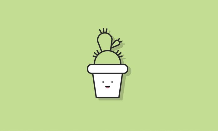 Ferienlager-Motto: Mein kleiner grüner Kaktus
