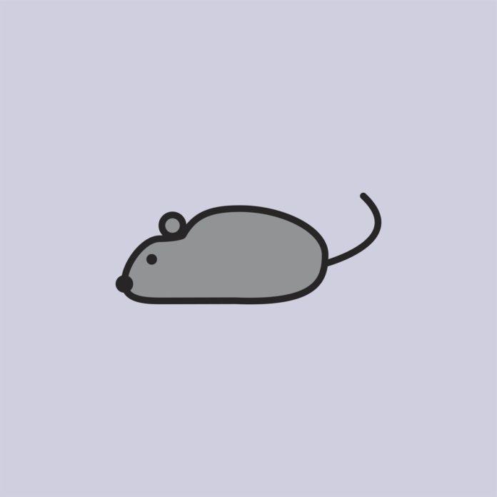 Bewegungsgeschichte für Kinder: Maus