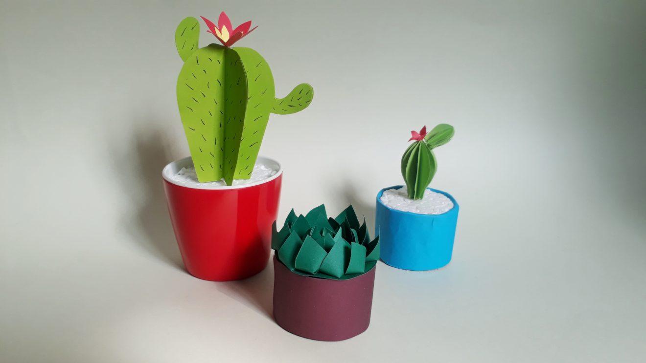 Video: Einen Kaktus aus Papier basteln